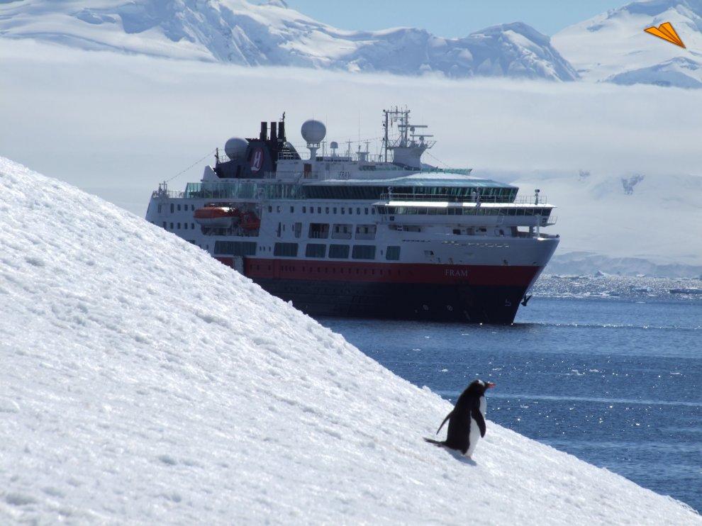 Pingino junto al mar fotos de viajes for Hoteles junto al mar