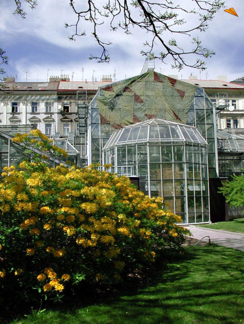 Jardín Botánico de la Universidad Carolina. Fotos de ...