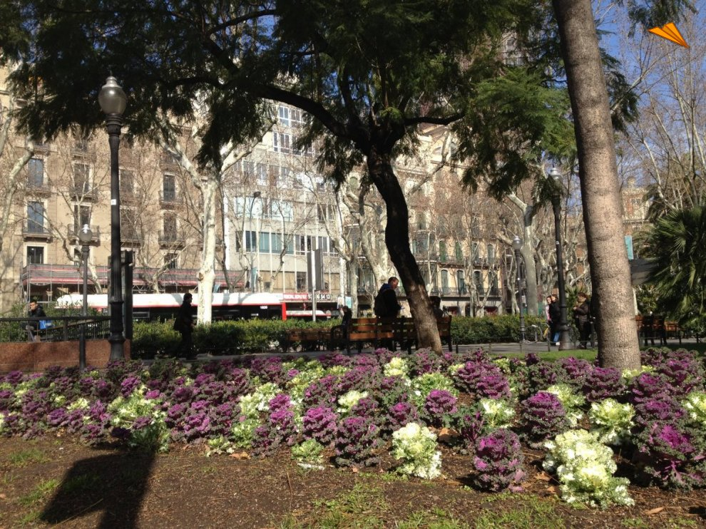 Jardines de plaza urquinaona de barcelona fotos de viajes - Jardines de barcelona ...