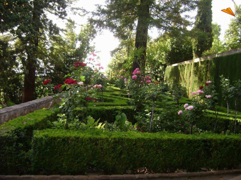 Jardines del generalife en flor fotos de viajes for Jardines de gomerez granada