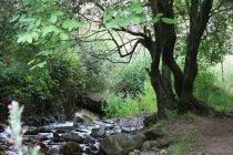 fotos La Rioja, Paisajes Naturales. Disfrutar en la naturaleza y conocer un entorno rural riojano