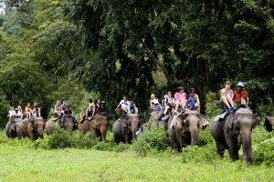 fotos Tailandia. Naturaleza y Aventura