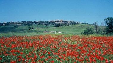 Campiña Toscana, una mezcla fascinante de naturaleza y cultura