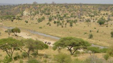 Tarangire, de ruta en safari