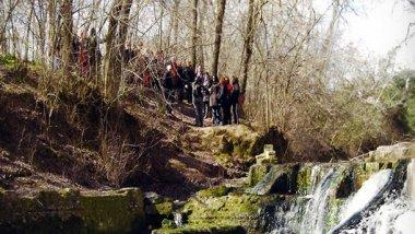 Itinerarios para recorrer el Parque Nacional de Doñana