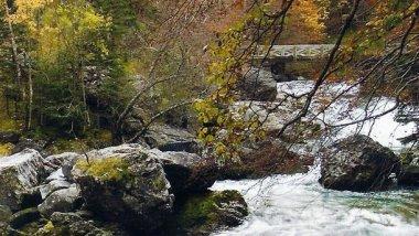 Aragón, lánzate a la aventura más natural