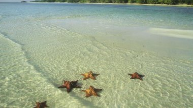 Cuba, guía de playas