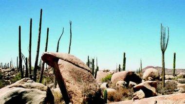 Baja California, espacios mágicos que te cautivarán