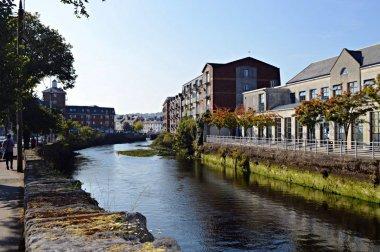 Guía para descubrir Cork
