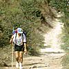 Camino de Santiago: Camino frances