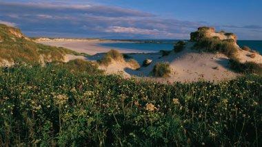 Escocia, ideas para visitar sus islas