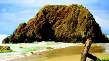 Costa Grande, riquezas naturales