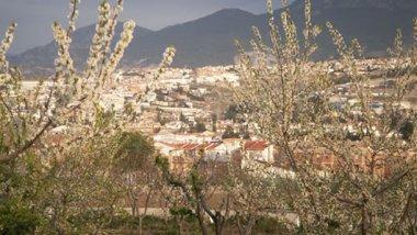 Granada - Cájar, cultura del Argar