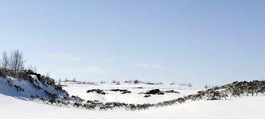 Finnmarksvidda, rutas por su altiplanicie