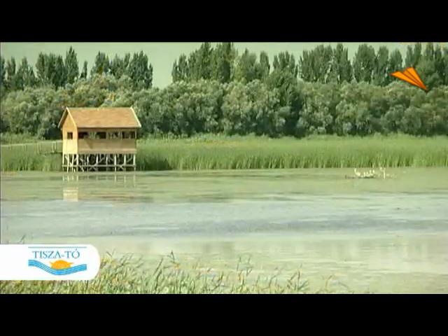 video Hungría - Lago Tisza, una nueva perpectiva de la naturaleza