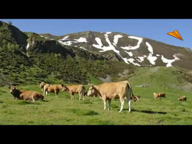 video Asturias - Oviedo, sabor medieval