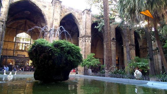 video Catedral de Barcelona. Turismo de Barcelona