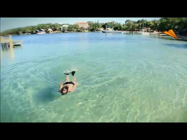 video Honduras - Islas de la Bahia, un lugar casi intacto
