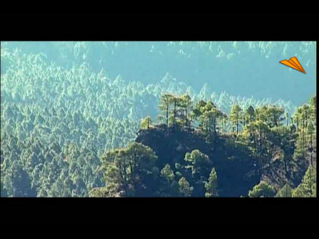 video Islas Canarias - La Palma, naturaleza