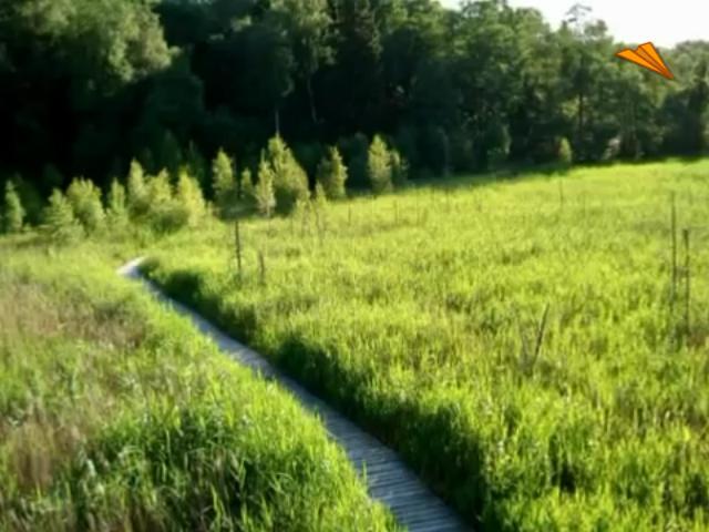video Lituania. Parque Dubysos. Qué ver del parque natural