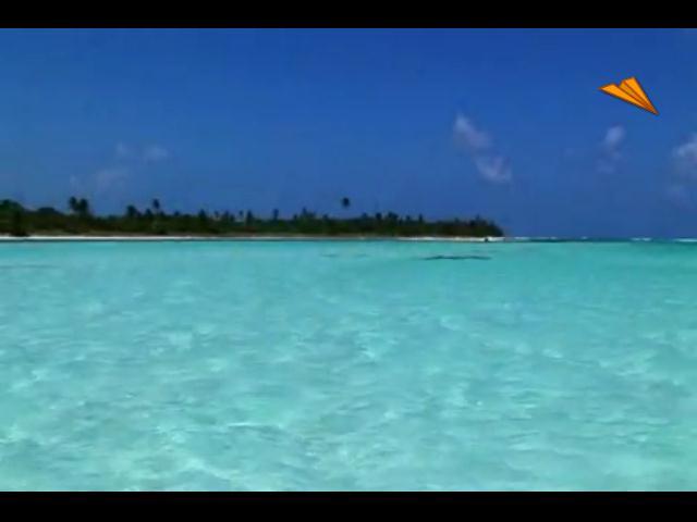 video México - Quintana Roo, visita el caribe