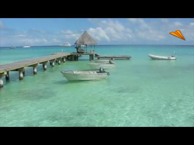 video Tahití, buceo con delfines en Rangiroa